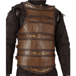 Leather Body Armor