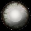 Magic Grey Contact Lenses