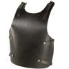 Larp leather backplate